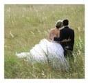 L'Église propose un document de réflexion sur le «mariage pour tous»